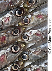Anchovies texture. - Some fresh anchovies at the market to...