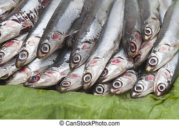 Anchovies 8. - Some fresh anchovies at the market to be...