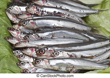 Anchovies 7. - Some fresh anchovies at the market to be...