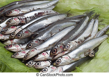 Anchovies 4. - Some fresh anchovies at the market to be...