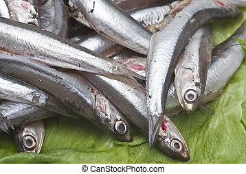 Anchovies. - Some fresh anchovies at the market to be sold.