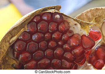 Pomegranate macro with Seeds, Italy