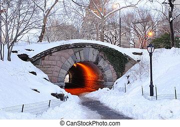 Város, központi, Tél, liget,  York, új,  Manhattan