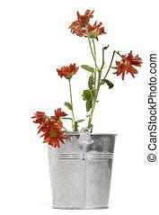 wilted flower planter
