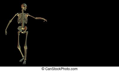 Skeleton on black with copy space