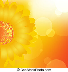 Sunflower Background, Vector Illustration