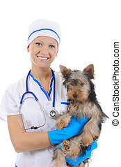 Veterinary with a dog for a review. isolated on white...