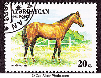Canceled Azerbaijan Postage Stamp Brown, Akhal-Teke...