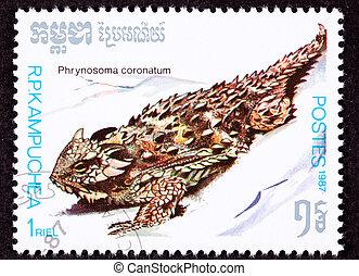 Costa, enastado, lagarto, Phrynosoma, Coronatum, A menudo,...