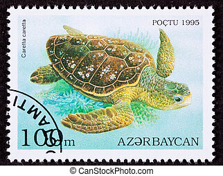 Canceled Azerbaijan Postage Stamp Swimming Loggerhead Sea...