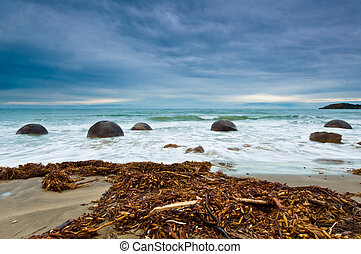 Moeraki Boulder East Coast of south New Zealand, on a cloudy...