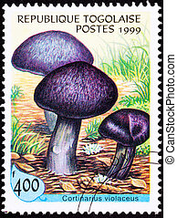 Canceled Togo Postage Stamp Fungus Violet Webcap Mushroom...