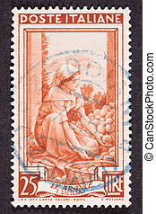 Drawing Woman Sorting Fruit, Used Italian Stamp, Cancelled...