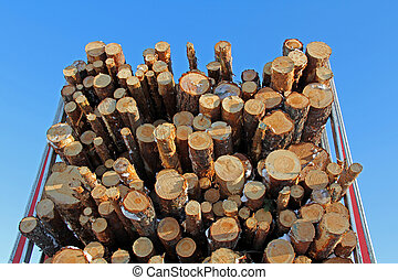 Pine Logs on Logging Semi Trailer - A load of pine timber on...