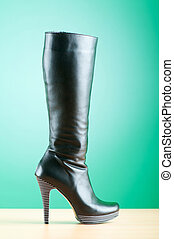 Fashion concept with woman top boots
