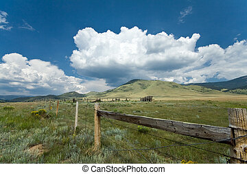 Alpine Meadow on the Enchanted Circle, Central Northern New...
