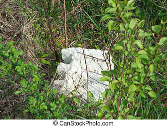 Chunk of Styrofoam in Brush and Weeds Littering Pollution...