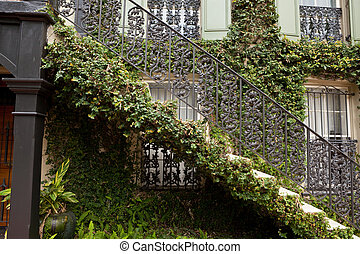 Ivy Covered Staircase Outside Home Savannah Georgia Wrought...