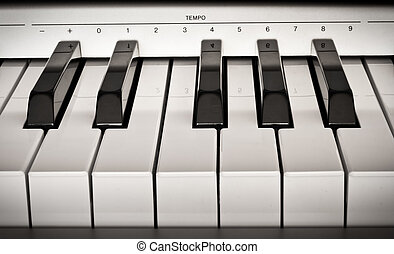 One octave of the electro piano