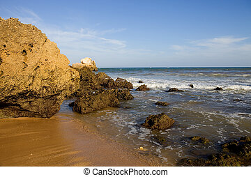 beach - portuguese beach at Algarve, the south of the...