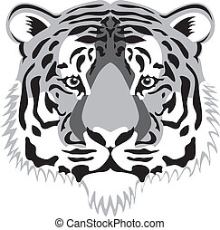 tiger head - vector tiger head