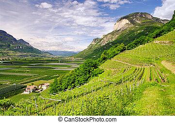 Trentino 01