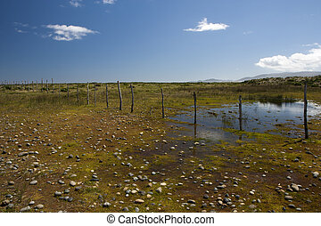 Wetlands with lagoon and stone nuggets