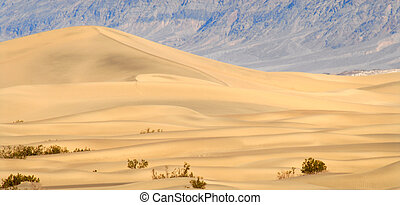 Large sand dune at sundown in Death Valley California