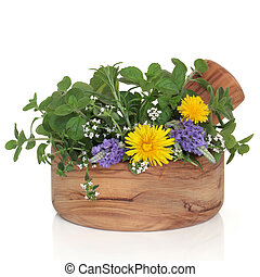 Herb and Wildflower Selection