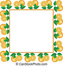 white frame of oranges