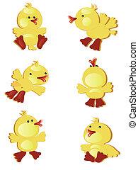 Ducklings,set