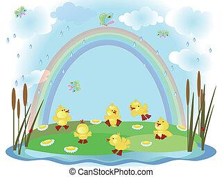 Summer ducklings