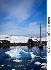 penguin in Antarctica - yacht sailing among the glaciers in...