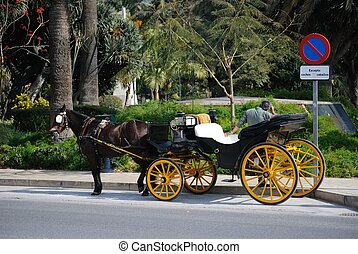 Andalucian buggy - Elegant andalucian buggy waiting for...