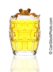 Beer and frog on a white background