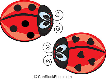 Ladybugs - Two Ladybugs Vector illustration on white...