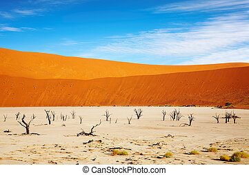 Namib Desert - Dead Vlei - Sossusvlei, Namib Desert, Namibia...
