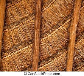 Palapa, tropical, México, madera, cabaña,...