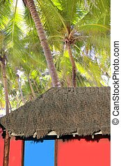 Caribbean hut red  house coconut palm trees