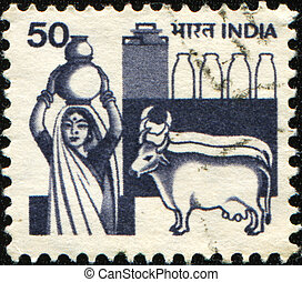 Woman with a jug of milk and two cows