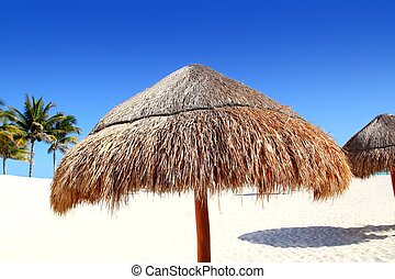 beach traditional sunroof hut caribbean umbrellas dried...