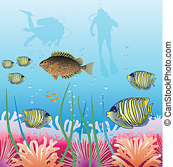 tropical fishes and scuba divers - underwater vector of...