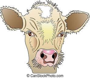 domestic animals - Beige Calf, domestic animal.