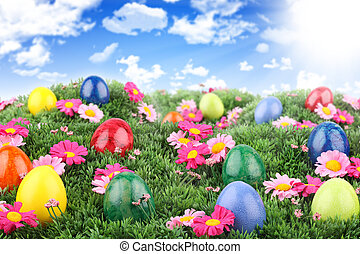 easter meadow 2 - Colorful easter eggs on meadow with blue...