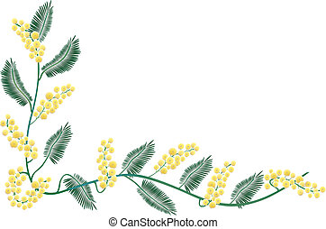 Mimosa border - A decorative border with a bunch of mimosa...