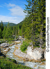 Wild brook -  Wild brook, by Filmoos in Austria.
