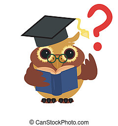 clever owl with book