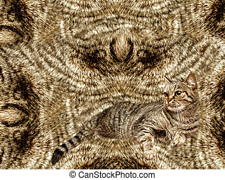 Abstract background with a cat