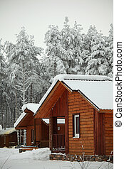 winter houses - houses in winter forest snow around