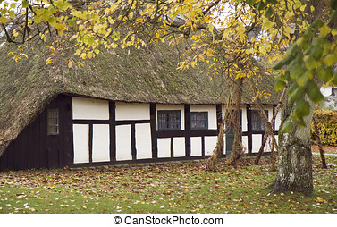 Half-Timbered House with thatched roof in autumn